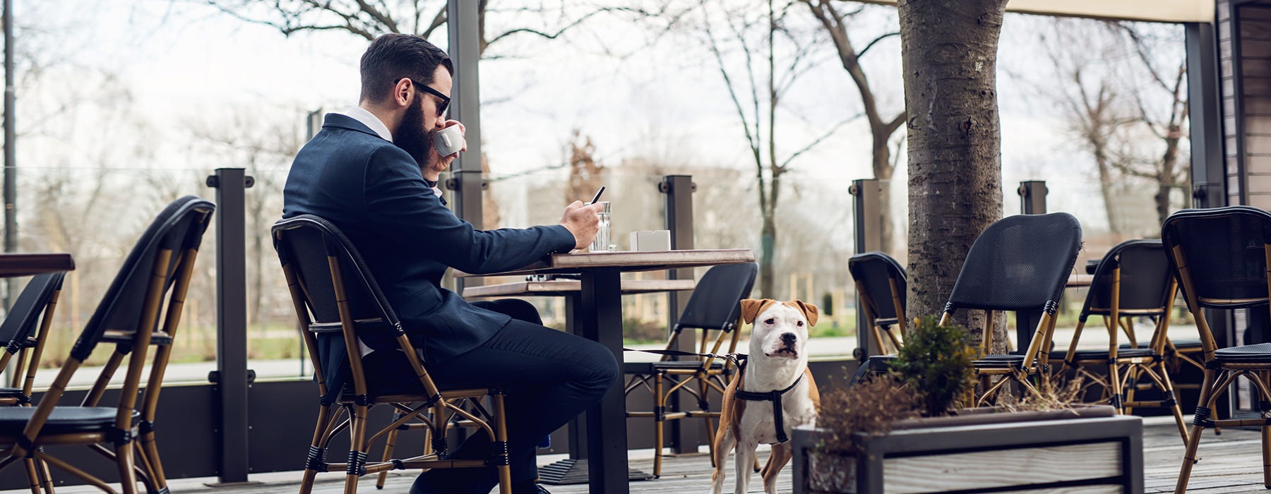 Gentleman sitting outside with pet dog